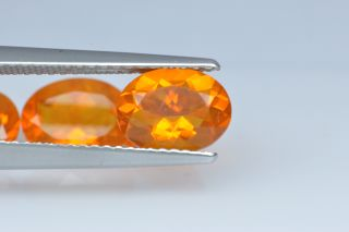 FIO222M - Fire Opal  8x6 Oval,  0.85 carats