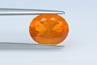 FIO227M_1 - Fire Opal  10x8 Oval,  1.84 carats