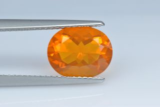 FIO227M_2 - Fire Opal  10x8 Oval,  1.88 carats
